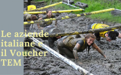 Voucher Tem: Il percorso a ostacoli
